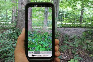 Virtual Garden App